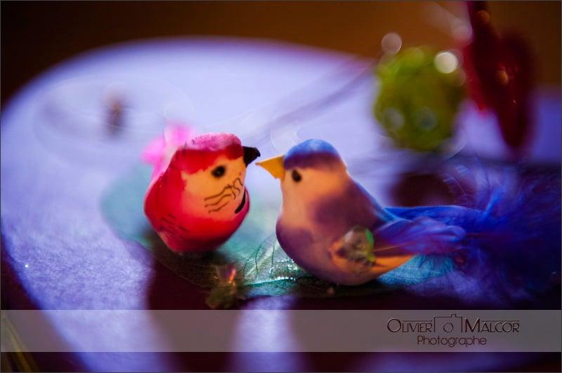 Oiseaux pour le mariage.